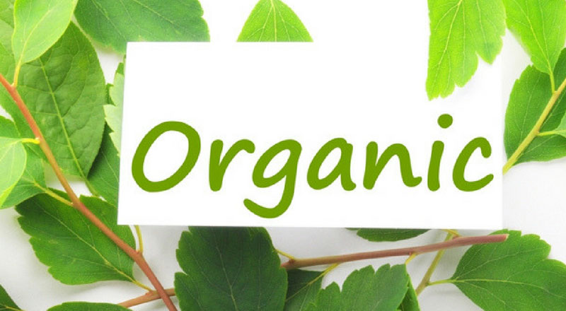 Hình 1: Mỹ phẩm hữu cơ (organic)