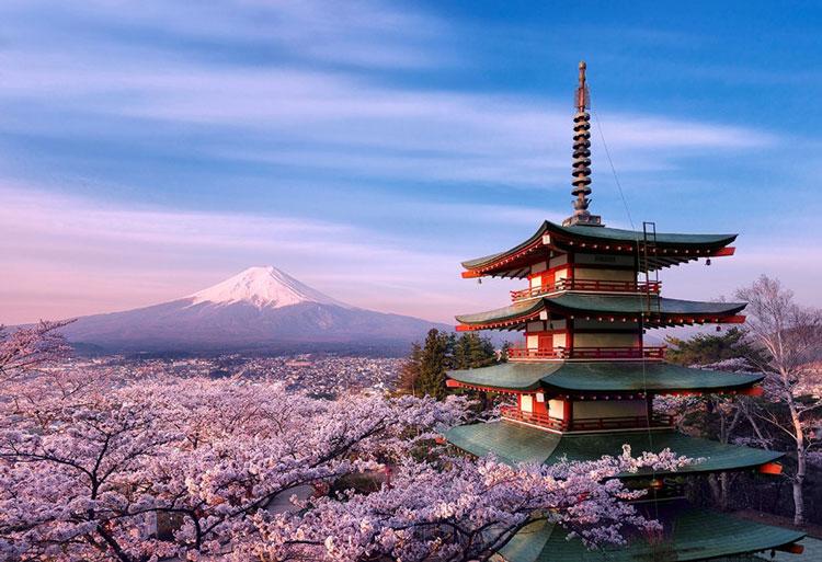 Nhận biết và xem hạn sử dụng mỹ phẩm Nhật Bản